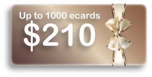 Up to 1000 ecards $210