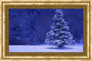 Click to preview the Christmas Tree ecard